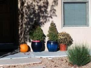 There are four pots in this picture.  No, one pot is a pumpkin.